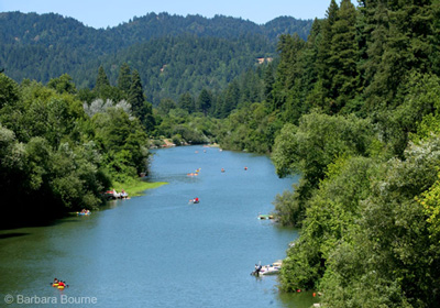 Get Involved in the Russian River Watershed Cleanup