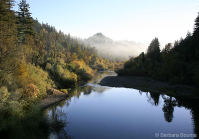 Contribute to the Russian River Watershed Cleanup